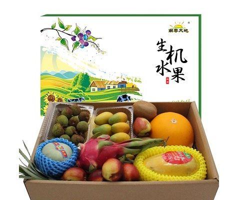 富昌馨园水果礼盒B款